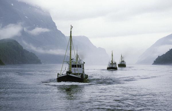 Singel i nord norge